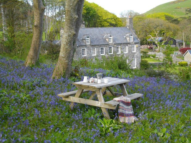 Country Mansion For Large Groups In The Snowdonia National