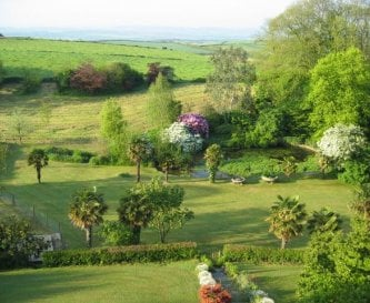 The garden (viewed from the roof)