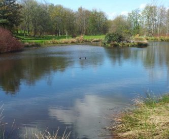Lovely lakes and 25 acre grounds at Land Ends