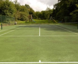 The Davis Cup sized tennis court.