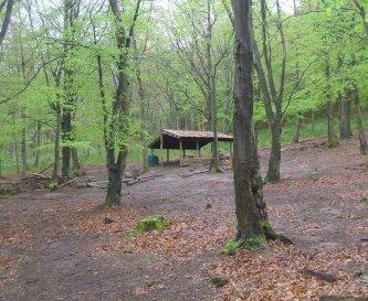Goblin Combe Beech Camp
