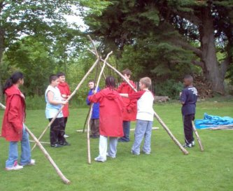 Shelter-building on the front lawn