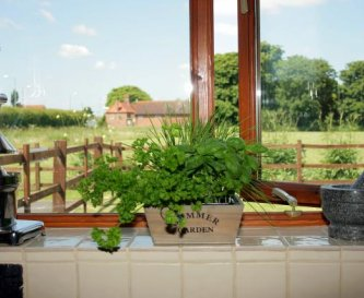 Elms Farm Holidays, 9 Cottages to sleep up to 38