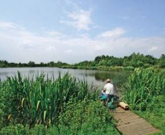 Fishing lake - with perch tench roach and carp
