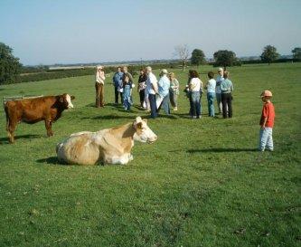 A farm tour on the deserted medieval village