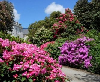 Set within stunning grounds and beautiful gardens