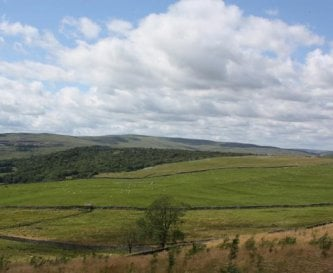 View from Grassington Bunk Barn to Grass Woods