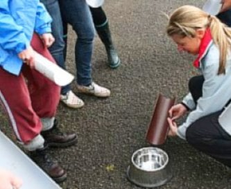 Guttering, a dog bowl & water = problem solving