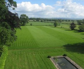 Shapwick's grounds