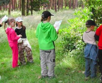 Activities to help you explore and discover